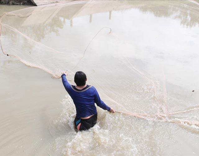 mo bat ca danh con gi - Giải mã ý nghĩa nằm mơ thấy giăng lưới bắt cá đánh con gì ?